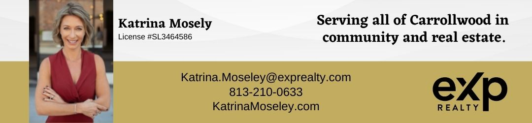 Banner Ads for Katrina Mosely eXp Realty